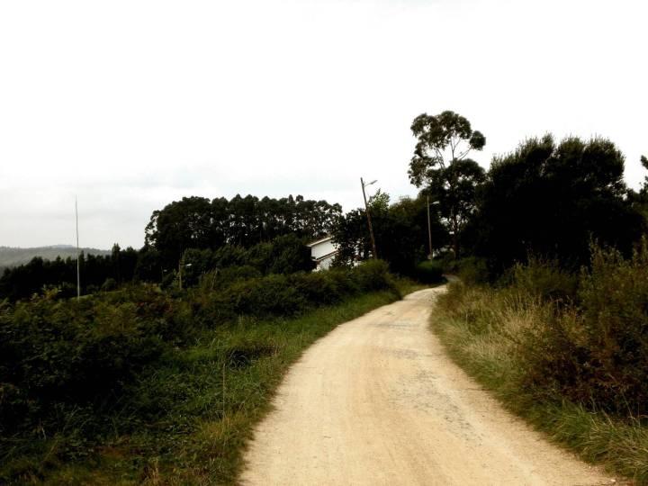 161-de-camino-a-santiago-del-monte