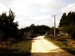 166-el-lugar-donde-vive-almudena