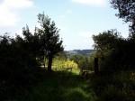 167-del-paisaje