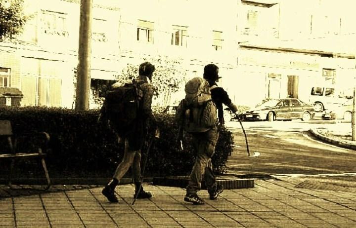 31-peregrinos-al-paso-por-la-avenida-de-alemania